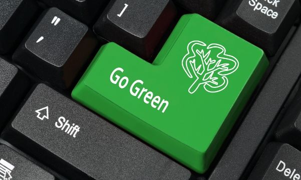 Sparrow Digital's Green Initiative & How You Can Green Your Workplace